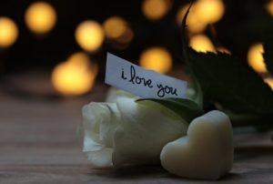 Fleur st valentin