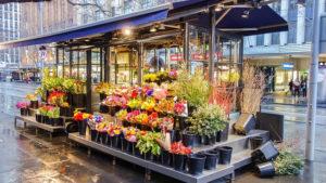 Fleuriste boutique